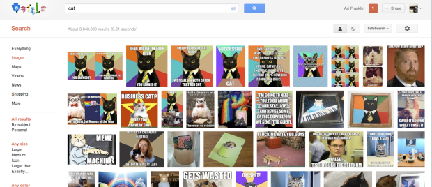 office cat google meme search results