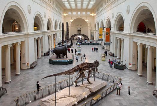 field museum fossils hall exhibit